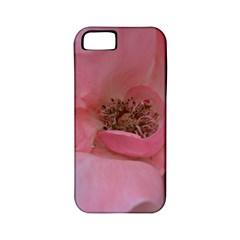 Pink Rose Apple iPhone 5 Classic Hardshell Case (PC+Silicone)