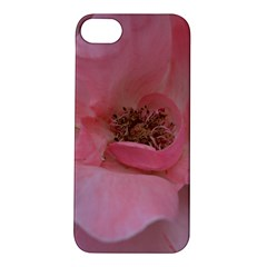 Pink Rose Apple iPhone 5S Hardshell Case