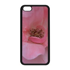 Pink Rose Apple iPhone 5C Seamless Case (Black)