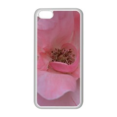 Pink Rose Apple iPhone 5C Seamless Case (White)