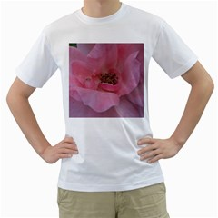 Pink Rose Men s T-Shirt (White)