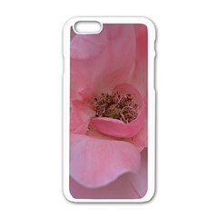 Pink Rose Apple iPhone 6 White Enamel Case