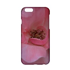 Pink Rose Apple iPhone 6/6S Hardshell Case