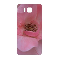 Pink Rose Samsung Galaxy Alpha Hardshell Back Case