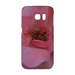 Pink Rose Galaxy S6 Edge