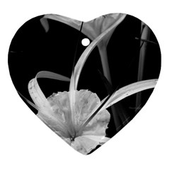 Exotic Black And White Flowers Ornament (heart)  by timelessartoncanvas