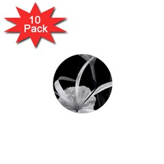 Exotic Black And White Flowers 1  Mini Buttons (10 Pack)  by timelessartoncanvas