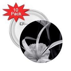 Exotic Black And White Flowers 2 25  Buttons (10 Pack)  by timelessartoncanvas