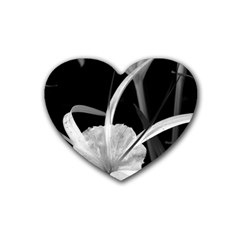 Exotic Black And White Flowers Heart Coaster (4 Pack)  by timelessartoncanvas