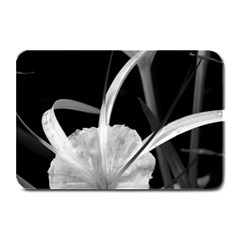 Exotic Black And White Flowers Plate Mats by timelessartoncanvas