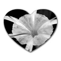 Exotic Black And White Flower 2 Heart Mousepads by timelessartoncanvas
