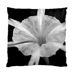 Exotic Black And White Flower 2 Standard Cushion Cases (two Sides)  by timelessartoncanvas