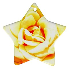 Orange Yellow Rose Star Ornament (two Sides)  by timelessartoncanvas