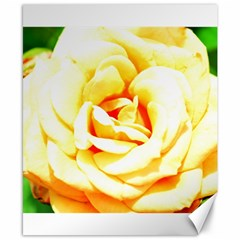 Orange Yellow Rose Canvas 8  X 10  by timelessartoncanvas