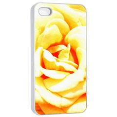 Orange Yellow Rose Apple Iphone 4/4s Seamless Case (white) by timelessartoncanvas