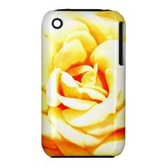Orange Yellow Rose Apple Iphone 3g/3gs Hardshell Case (pc+silicone) by timelessartoncanvas