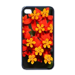 Orange And Red Weed Apple Iphone 4 Case (black) by timelessartoncanvas