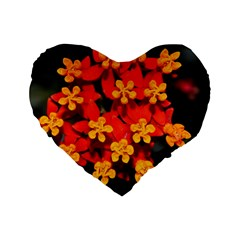Orange And Red Weed Standard 16  Premium Flano Heart Shape Cushions by timelessartoncanvas