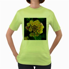 Colorful Flowers Women s Green T Shirt by timelessartoncanvas