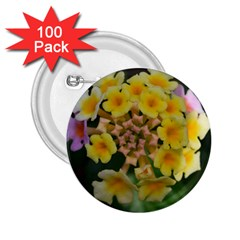Colorful Flowers 2 25  Buttons (100 Pack)  by timelessartoncanvas