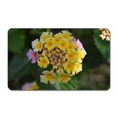 Colorful Flowers Magnet (rectangular) by timelessartoncanvas