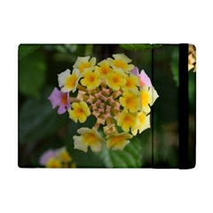 Colorful Flowers Apple Ipad Mini Flip Case by timelessartoncanvas