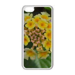 Colorful Flowers Apple Iphone 5c Seamless Case (white) by timelessartoncanvas
