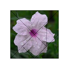 Pink Purple Flowers Acrylic Tangram Puzzle (4  x 4 ) by timelessartoncanvas