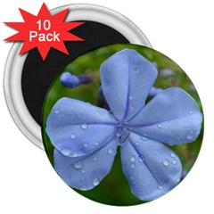 Blue Water Droplets 3  Magnets (10 Pack)  by timelessartoncanvas