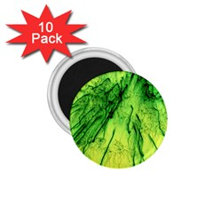 Special Fireworks, Green 1.75  Magnets (10 pack)  by ImpressiveMoments