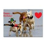Birthday Dogs Sticker (A4)