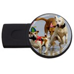 Birthday Dogs USB Flash Drive Round (2 GB)