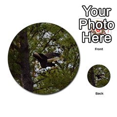 Bald Eagle Multi Purpose Cards (round)  by timelessartoncanvas