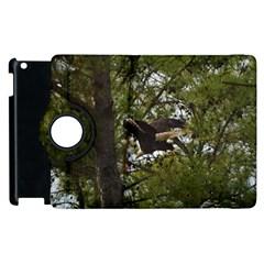 Bald Eagle Apple Ipad 2 Flip 360 Case by timelessartoncanvas