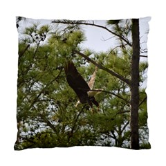 Bald Eagle 2 Standard Cushion Case (one Side)  by timelessartoncanvas