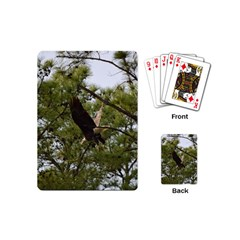 Bald Eagle 2 Playing Cards (mini)  by timelessartoncanvas