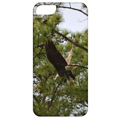 Bald Eagle 2 Apple Iphone 5 Classic Hardshell Case by timelessartoncanvas