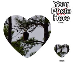 Bald Eagle 3 Multi Purpose Cards (heart)
