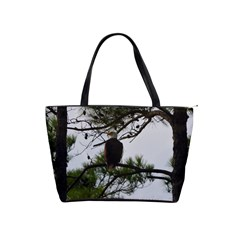 Bald Eagle 3 Shoulder Handbags by timelessartoncanvas