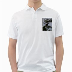 Bald Eagle 4 Golf Shirts by timelessartoncanvas