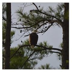 Bald Eagle 4 Large Satin Scarf (square)