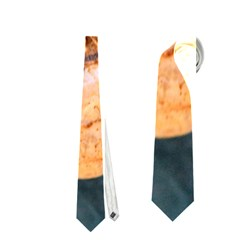 Sea Shell Spiral Neckties (two Side)  by timelessartoncanvas