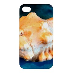 Sea Shell Spiral 2 Apple Iphone 4/4s Hardshell Case by timelessartoncanvas