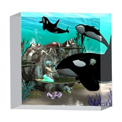 Cute Mermaid Playing With Orca 5  x 5  Acrylic Photo Blocks by FantasyWorld7