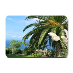 Sunny Tenerife Small Doormat  by MoreColorsinLife