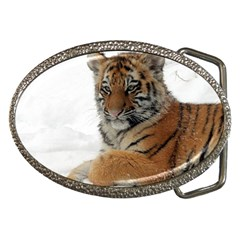 Tiger 2015 0101 Belt Buckles by JAMFoto