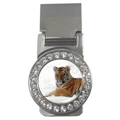 Tiger 2015 0101 Money Clips (cz)  by JAMFoto