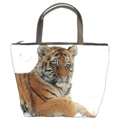 Tiger 2015 0102 Bucket Bags by JAMFoto
