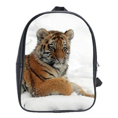 Tiger 2015 0102 School Bags(large)  by JAMFoto