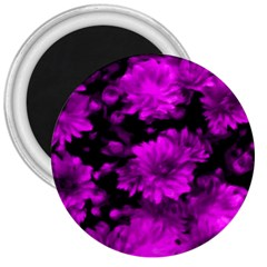 Phenomenal Blossoms Hot  Pink 3  Magnets